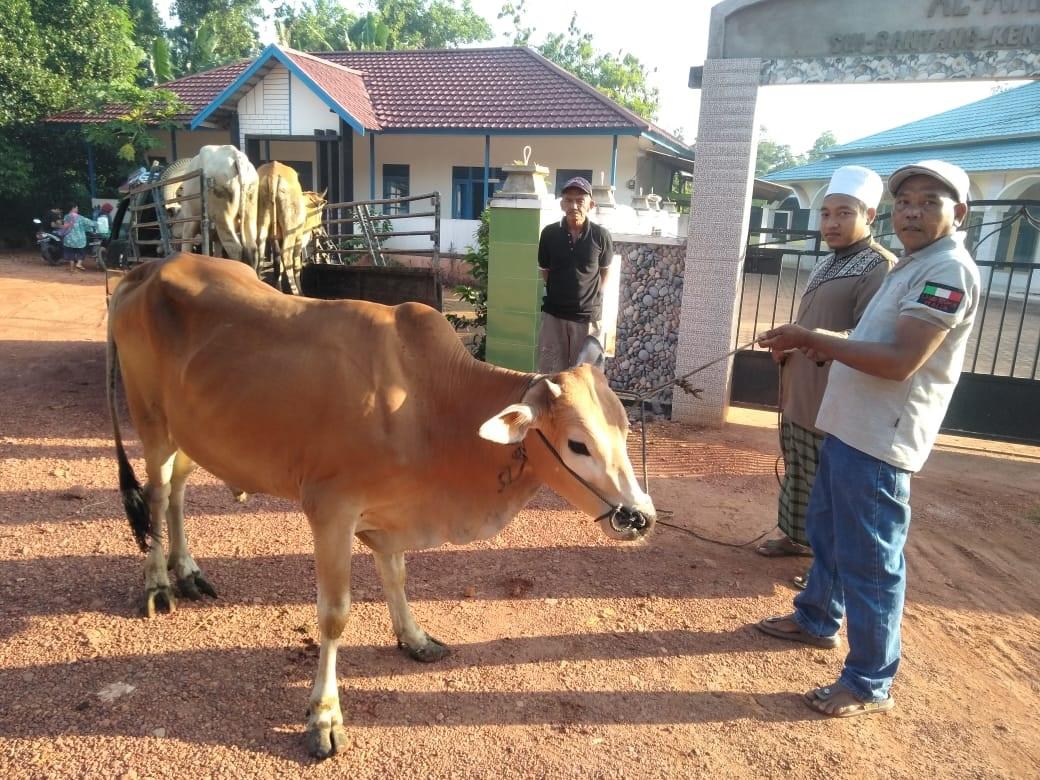 Memaknai Idul Adha,  PT WHW Salurkan Hewan Kurban ke Empat Dusun di Kendawangan 2