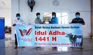 Memaknai Idul Adha,  PT WHW Salurkan Hewan Kurban ke Empat Dusun di Kendawangan 3