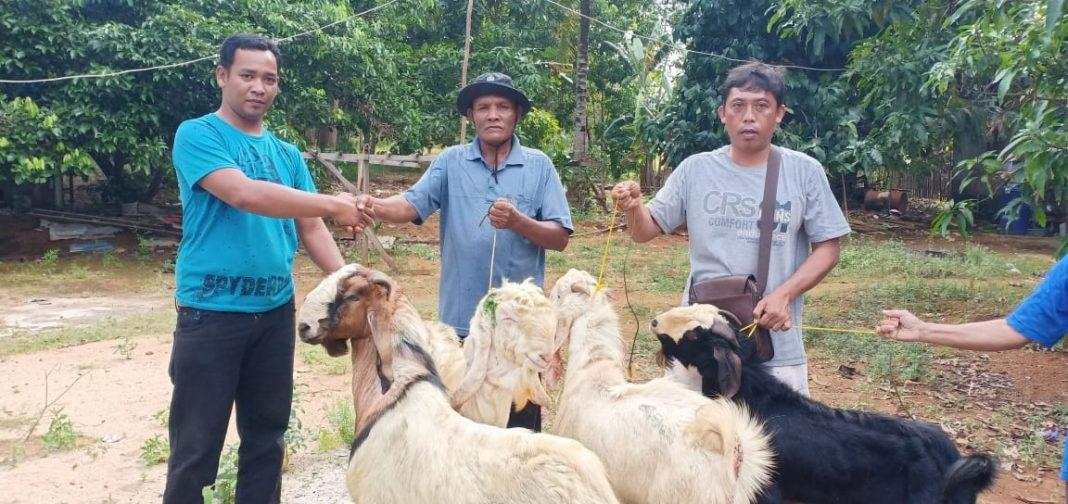 Memaknai Idul Adha,  PT WHW Salurkan Hewan Kurban ke Empat Dusun di Kendawangan 5