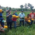 Sektor Pertanian Jadi Salah Satu Prioritas Aron-Subandrio Jika Dipercaya Pimpin Sekadau 6