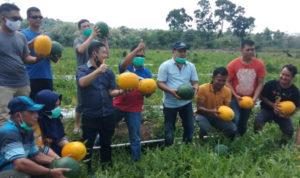 Sektor Pertanian Jadi Salah Satu Prioritas Aron-Subandrio Jika Dipercaya Pimpin Sekadau 2