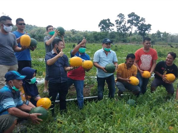 Sektor Pertanian Jadi Salah Satu Prioritas Aron-Subandrio Jika Dipercaya Pimpin Sekadau