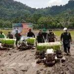 Bupati Martin Tanam Padi Serentak di Kawasan Pampang Seribu MHU