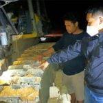 Mekanik PT WWPI Air Upas Tewas Terlindas Buldoser